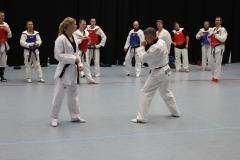 50 Jahre Taekwondo in Hamburg